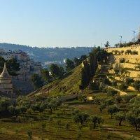 Иерусалим. Вид на гору Сион. :: Игорь Герман