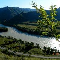 Катунь. Долина горных духов, вид сверху :: Екатерина Филиппович