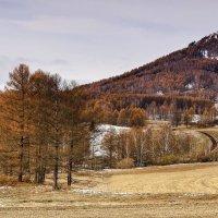 Чудеса, это осень в горах :: Сергей Жуков