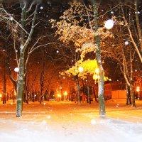 Начало ноября :: Валентина Ломакина