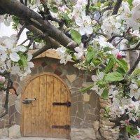 Весна, весна! :: Игорь Карпенко
