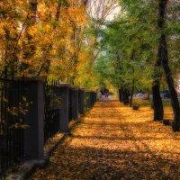 Вот и встретились лето и осень. :: Виктор Иванович