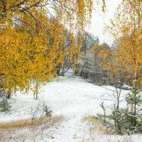 Снег в октябре 18 :: Виталий