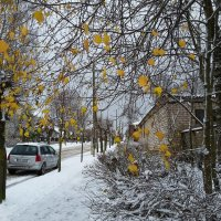 Ноябрь :: Юрий Бондер
