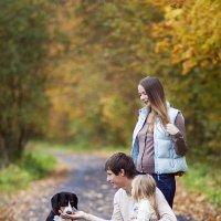 Семейные радости :: Ира Никина