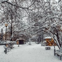 Зима в парке :: Вячеслав Баширов