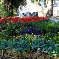 Уголок в осеннем парке... :: Тамара (st.tamara)