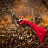 Девушка в осеннем лесу :: Ольга Невская