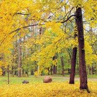 Осенний блюз :: U. South с Я.ру