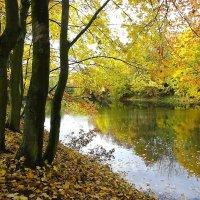 Городской парк Южный в октябре :: Маргарита Батырева