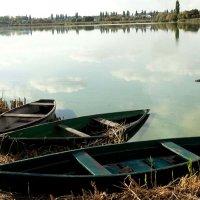 Лодки. :: Николай Сидаш