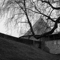 Старая крепость :: Вера Моисеева