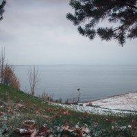 Лето-осень-зима! :: Андрей Акимов