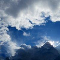 Пушистыми клочками облака плывут куда-то... :: Светлана