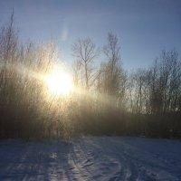 Зимушка-зима, первый мороз. :: Lu Clever