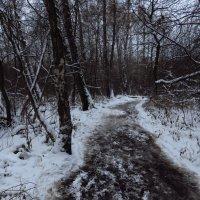 Когда темнеет в парке :: Андрей Лукьянов