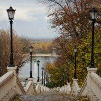 Киев :: Наталия Скрипка
