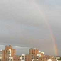 После летнего дождя :: Оксана Кошелева
