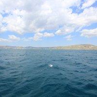 Отдых на море-380. :: Руслан Грицунь
