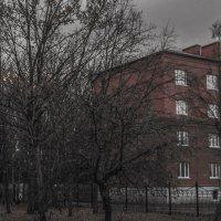 в осеннем парке :: Юлия Денискина