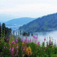 Июльское утро в горах :: Сергей Чиняев