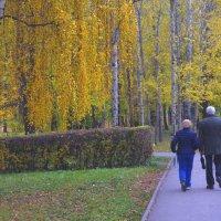 Прогулки по осени. :: Александр Атаулин