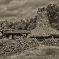 Дома острова Сумба.Индонезия. :: Александр