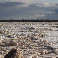 Ледоход на Северной Двине. :: Ираида Мишурко