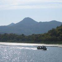 №3.Черногория. Скадарское озеро. :: Лариса (Phinikia) Двойникова