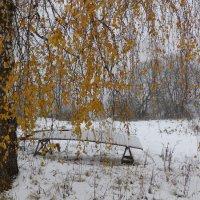 Желтое на белом :: alex K