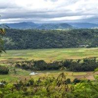 о.Сумба,Индонезия :: Александр