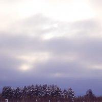 Зима :: Арина Cтыдова