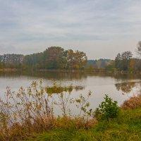 У осеннего пруда :: Waldemar .