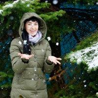первый снег :: Наталия Сарана