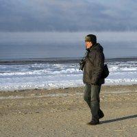 Сегодня у Белого моря (1) :: Владимир Шибинский