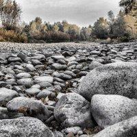 высохшее русло реки. :: lev