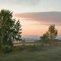 Утренний туман :: Андрей Климов