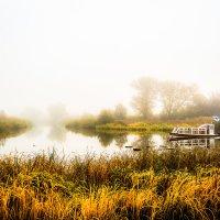 Туман над рекой..................... :: Александр Селезнев