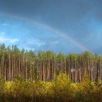 Осенняя радуга. :: Андрий Майковский