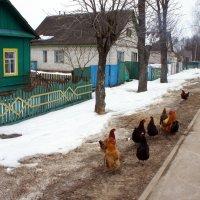На улице города :: Елена Павлова (Смолова)