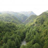 Черногория.Каньон реки Тара. :: Лариса (Phinikia) Двойникова