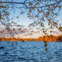 Еще осень.. :: Евгения К