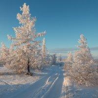 Дорога в зиму!!! :: Олег Кулябин