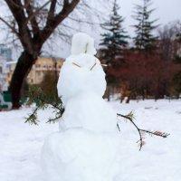 Осенний снеговик :: Татьяна Гузева