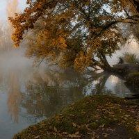 Об осеннем утре с туманом и одиноком рыбаке :: Александр Плеханов