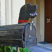 Собачья защиты :: M Marikfoto