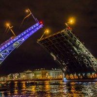 Мосты Петербурга :: Elena Ignatova