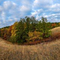 Лесостепная осень. :: Фёдор. Лашков