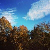 Осень :: Christin`e Aghababyan