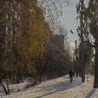 зима наступает :: gribushko грибушко Николай